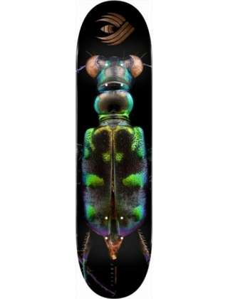 Powell Peralta Deck Pro Flight Tiger Beetle 8.25'' - Deck